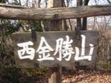 西金勝山.JPG