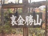 裏金勝山.JPG